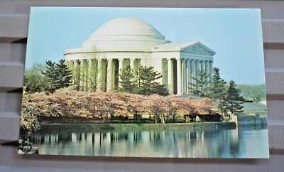 Postcard Vintage The Thomas Jefferson Memorial  Cherry Blossom Time