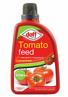 Doff Tomato Feed with Seaweed & Magnesium Concentrate 1L makes up to 300 Litres