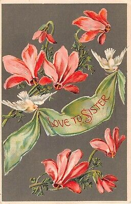 Pretty Pink Cyclamen by Doves With Banner That Says Love To Sister-1909 Postcard