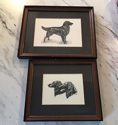 Set Of Two Framed Art Pieces Of Flat coat retrievers Dogs Professionally Matted