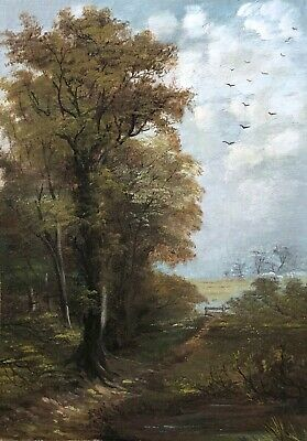 A Wooded Landscape Antique Oil Painting 19th Century English School