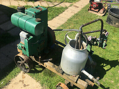 Lister D stationary engine with Stuart water pump.