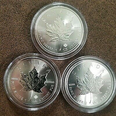 LOT of 3 - 2019 1 oz. SILVER CANADIAN MAPLE LEAF $5 Coins - ENCAPSULATED - BU!!!