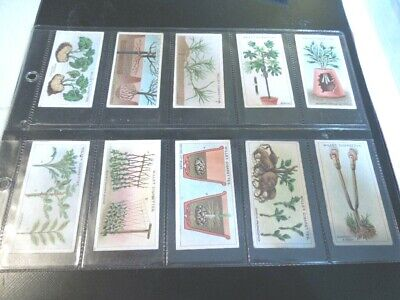 1923 Wills GARDEN HINTS flowers plants Tobacco Cigarette 50 cards complete set
