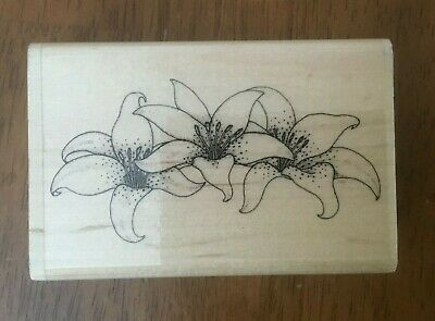 Stamp Oasis Trio of Tiger Lilies Flowers 1994 Rubber Stamp