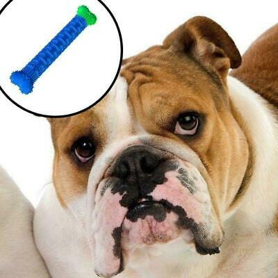 Chew Toy Dog Toothbrush Pet Molar Tooth Cleaning Brushing 2020 Stick Doggy Z1M6
