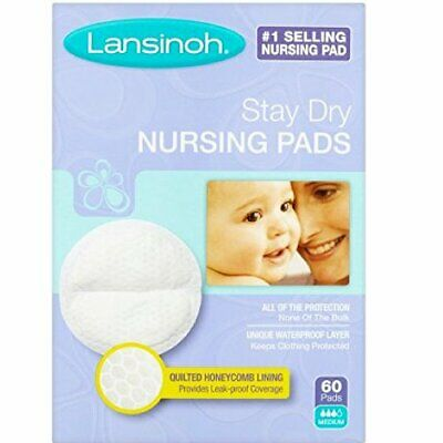 Lansinoh Nursing Pads Stay Dry 60 Each  Pack of 8