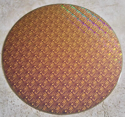 "Very Rare Copper 12"" IC Microchip Silicon Pattern Wafer with Blue Background"
