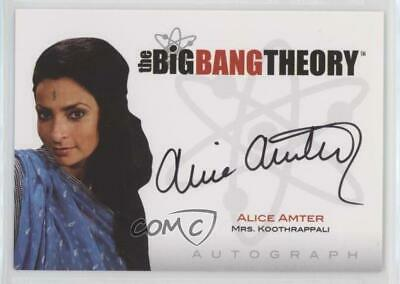 The Big Bang Theory Alice Amter Seasons 3 And 4 Autograph Card A13 27 99 Picclick Uk Find the perfect alice amter stock photos and editorial news pictures from getty images. picclick uk