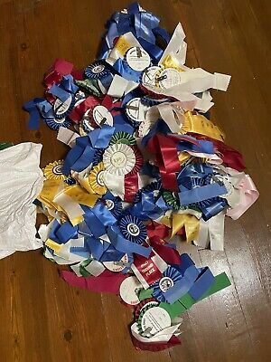 Lot Of Horse Show Ribbons-used