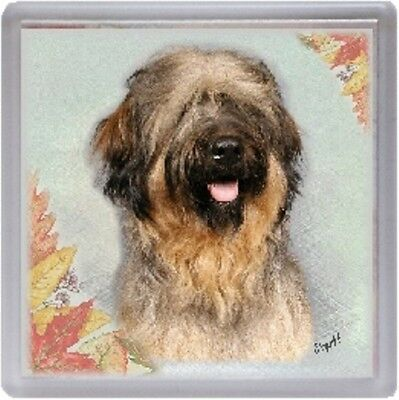 Briard Coaster Starprint Product