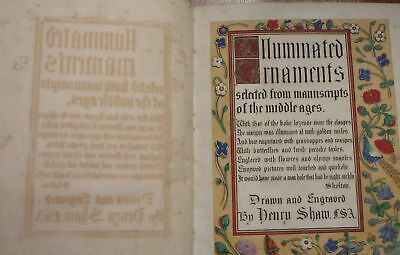 Shaw Medieval Illuminated Manuscripts Color Gold Lithographs Ornaments Bible AO