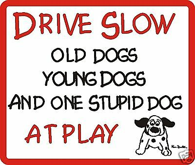 Drive Slow Stupid Dog Sign