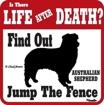 Australian Shepherd Warning Sign - Many Breeds Avail.