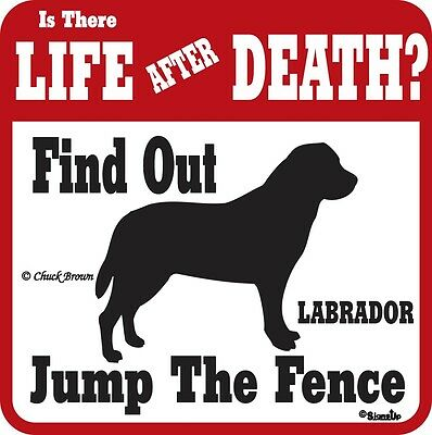 Labrador Funny Warning Dog Sign - Many Breeds Avail
