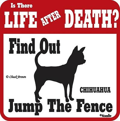 Chihuahua Life After Death Funny Warning Dog Sign