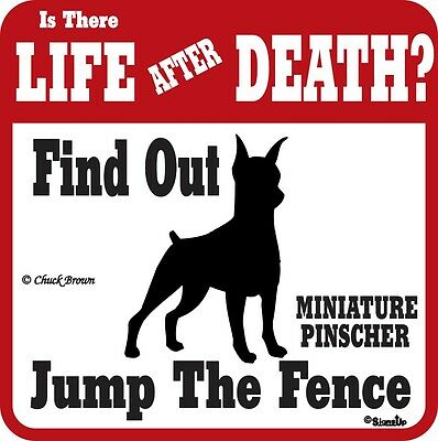 Miniature Pinscher  Life After Death Funny Warning Dog Sign