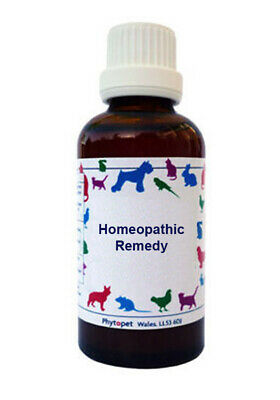 Phytopet Homeopathic Pet Sepia 30c dog cat Maternal instinct