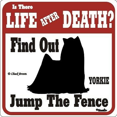 Yorkie Funny Warning Dog Sign - Many Breeds Available
