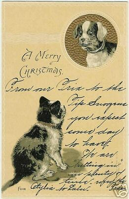 Cats, Cat and a little Dog, old embossed postcard