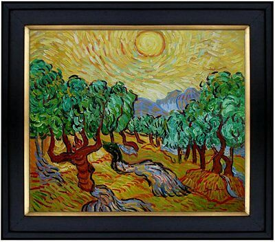 Framed Quality Hand Painted Oil Painting Repro Van Gogh Olive Trees 20x24in