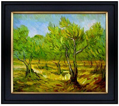Framed Hand Painted Oil Painting Repro Van Gogh Orchard, Saint-Remy 20x24in
