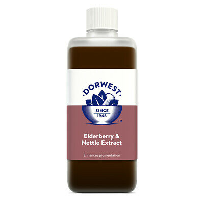 Dorwest Herbs Elderberry & Nettle 250ml dog cat supplement