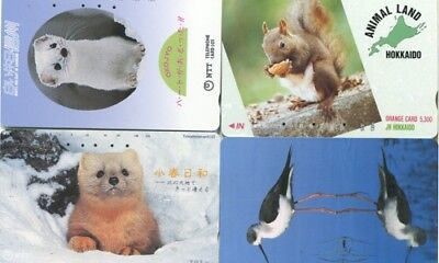 Japon - Japan - Aves-Birds-Ardilla-Squirrel-Otros- 1182