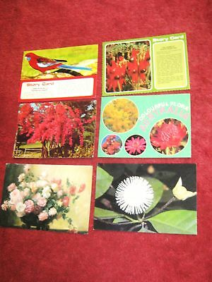 Six  Flowers  And Birds   Postcards