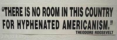 PATRIOTIC STICKER~No Room In This Country For Hyphenated Americanism~T Roosevelt
