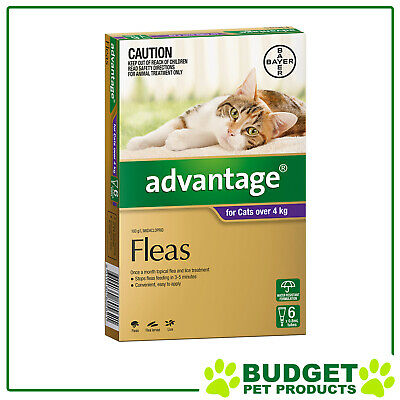 Advantage For Cats Over 4kg 6 pack PLUS 2 FREE DOSES