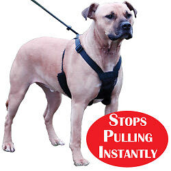 NEW Sporn Non Pull Dog Harness Instantly Stops Large