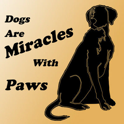 Dogs with Paws wall quote saying phrase black letter