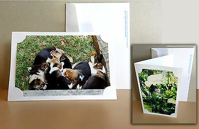 100 White Blank Photo Cards and 100 white envelopes FREE POSTAGE