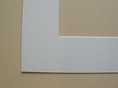Pack Of 10 White 8X6 Inch Picture Mounts