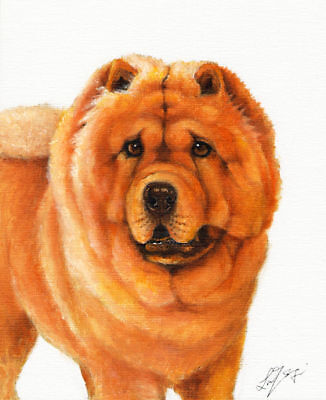 Original Oil DOG Portrait Painting CHOW CHOW Artwork Art
