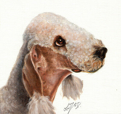 Original Oil DOG Portrait Painting BEDLINGTON TERRIER Artwork Art from Artist