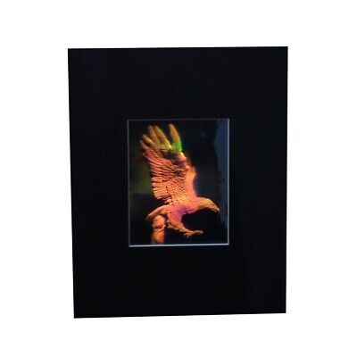 Eagle Matted Hologram Picture, 3D Embossed Type