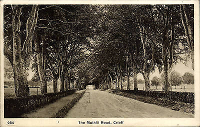 Crieff. The Muthill Road # 984.