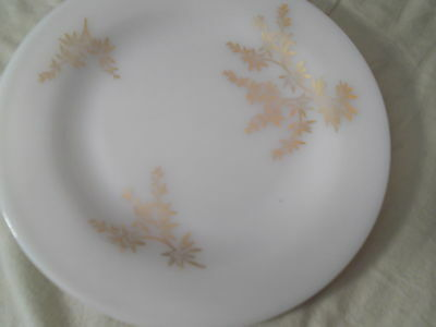 "Vintage Federal Milk White Golden Glory 9"" Dinner Plates Heat Proof -FREE SHIP!"