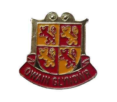Knighton Wales Welsh Powys Enamel Lapel Pin Badge