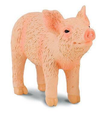CollectA 88344 Standing Piglet Head Up Smelling - Realistic Pig Animal Replica