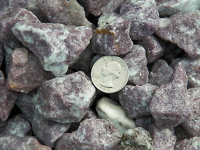 1000 Carat Lots of Lepidolite Rough - Plus a FREE Faceted Gemstone