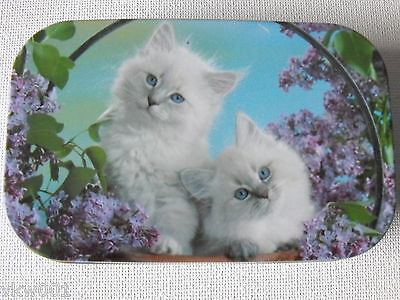 "1 oz HINGED TIN ""TWO WHITE KITTENS IN FLOWERS"""