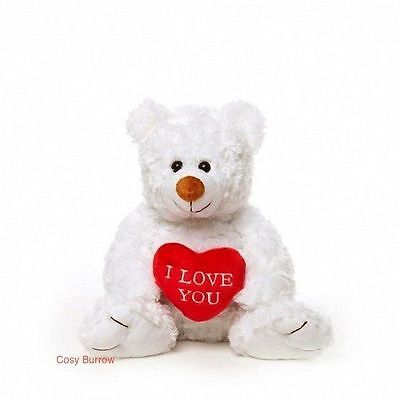White Teddy Bear With I Love You Heart Valentines Gift Called Joe Talking