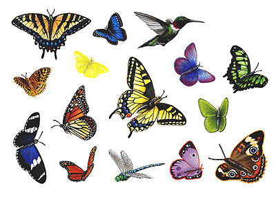 Butterfly Wall Stickers Decals