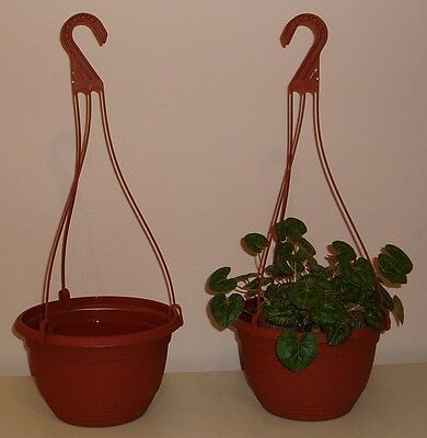 "Set Of Two New Terracotta Plastic 11"" Hanging Basket Planters With Hangers"