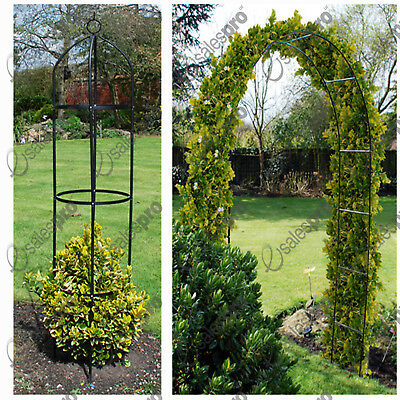 Garden arch & obelisk trellis feature climbing plant roses either or both deals