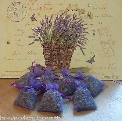 7 Lavender Bags Aromatic, Moth Repellent, Calming, Sleep Aide,Cello Wrapped