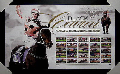 Black Caviar - Farewell To A Legend Framed Limited Edition - Brand New
